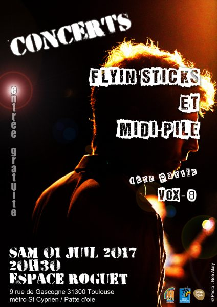affiche-groupesmjc2017
