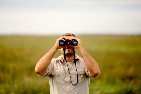 safari-image