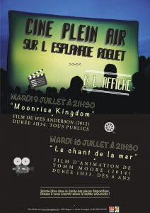 Cinéma de plein air les 9 et 16 juillet