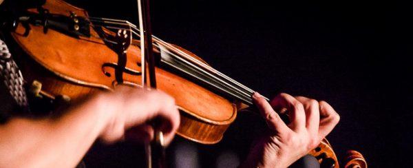 violon-automne