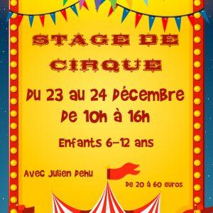 stage-de-cirque-decembre-web